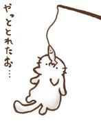 猫釣り(=^・ω・^=)