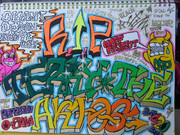 R.I.P TERRY THE AKI-06(Graffiti)