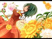 花符・幻想郷の開花