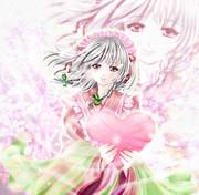 白い日に~桜、咲くや~