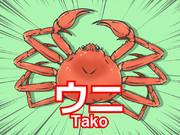 ウニ(Tako)