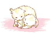 ねこなでさんの子猫×2