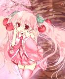桜ミクダヨー