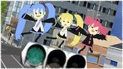 【第1回可愛いとりぷるばか選手権】信号機の上でとりぷるばかー!