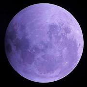 フリー素材 紫色の月