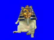 ファラオ猫.mur