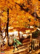 秋色の国へ【秋のポスター選手権】