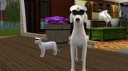 【Sims3】提督帽子【艦これ】