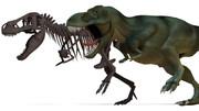 ティラノサウルスモデルVer2配布