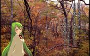 ライムちゃんと紅葉を見に来ました。「誰でも参加できる第2回旅のポスター選手権」