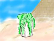 白菜描きますね