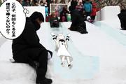 【MMD】さっぽろ雪まつり2015【滑り台】