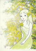 白樺の妖精