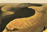 砂漠の起伏に擬態する蛇竜。