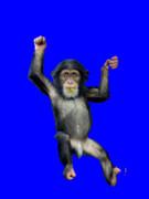 完全にパクったチンパンジー君UCBB