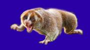 陸上を高速移動するオランウータンの餌BB