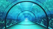 【MMDステージ配布】アクアトンネル EE8【スカイドーム】