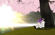 日の出の桜