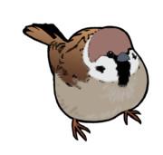 稲穂の国を脅かす汚らわしい害鳥?