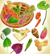 いろいろ野菜セットver1.0