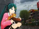 雨とPu式ミクさんと子猫