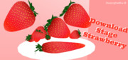Strawberry stage DOWNLOAD