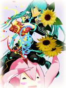 黒澪先生と向日葵
