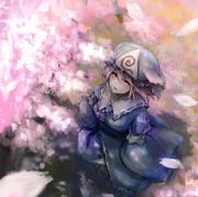 桜と幽々子様