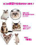 猫の顔型で正確がわかるらしい。