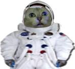 宇宙飛行士と化したMUR猫(透過PNG)