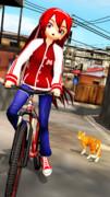 キクさんと自転車