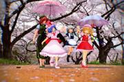 桜の花の咲く道で
