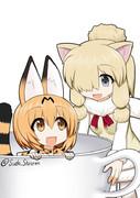 猫がカフェにいると、猫カフェになるんだよ~