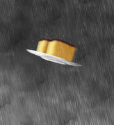 雨の中を飛行するカステラ