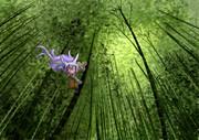 竹林のケモミミっ子♪