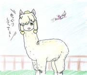 アルパカ・スリちゃん(野生解放)