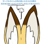 サーバルちゃんの耳の白い部分