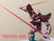 TRANS-AM   SYSTEM