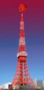 野獣先輩 東京タワー説