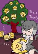 ジャガーのなる木