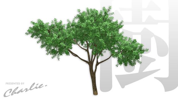 ちゃーりぃ式「樹」ハイポリモデル