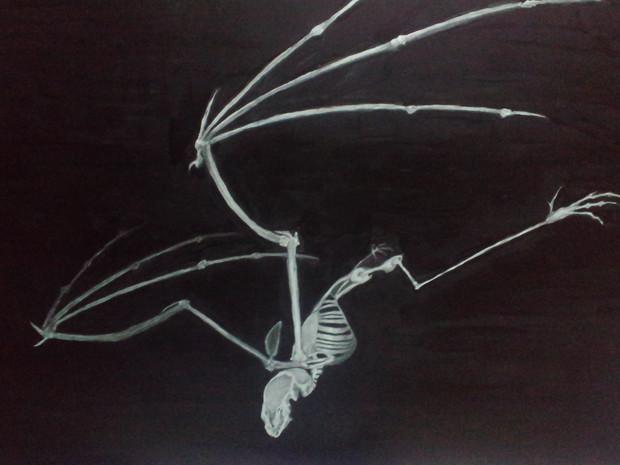 コウモリの画像 p1_27