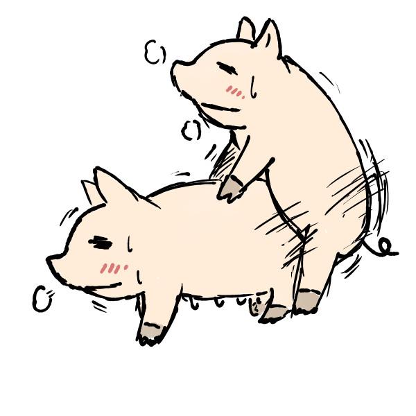 豚の画像 p1_9