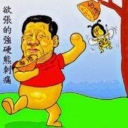 台湾総統選挙と中国の関係