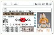 偽造運転免許