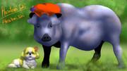 イノリコ豚とシーズーハ