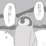 エンペラーペンギン23 入塾