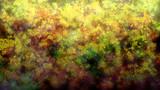 オリジナル曲「闇天花」動画用イラスト