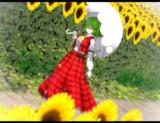 向日葵と……
