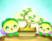松の木は、立派だ!